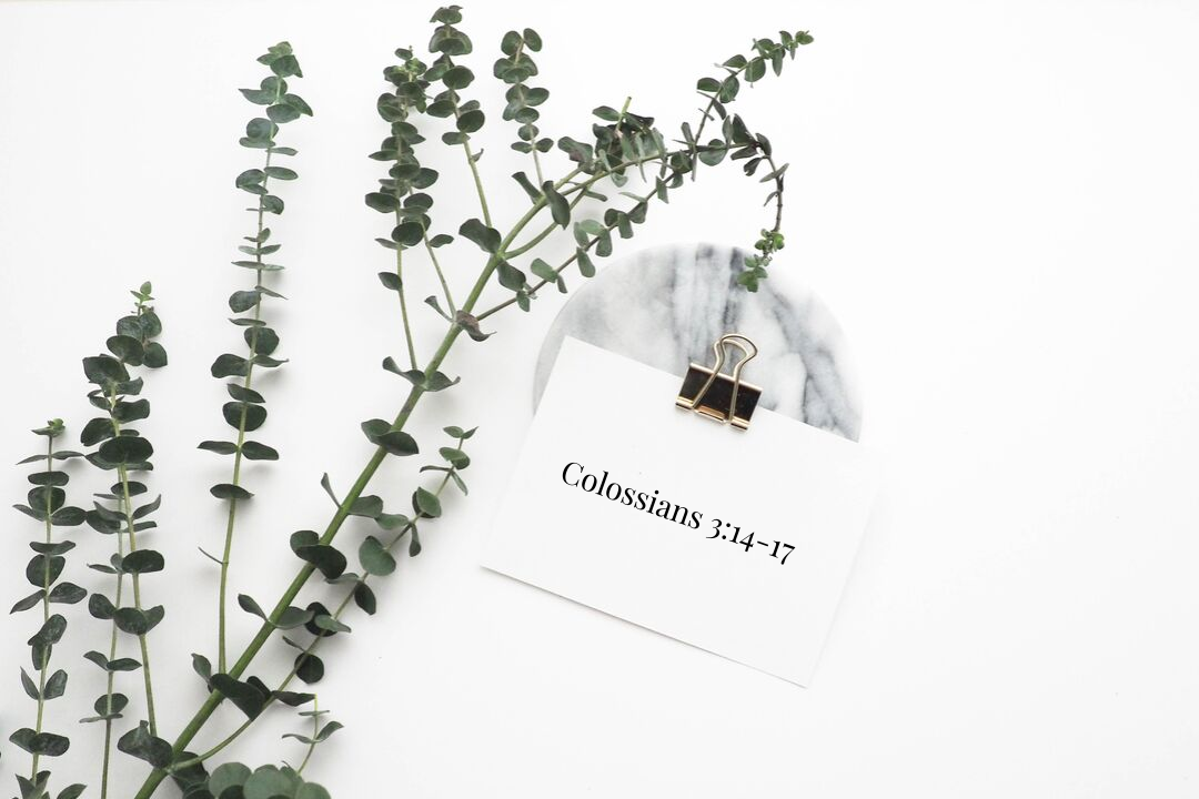 Colossians_3.png