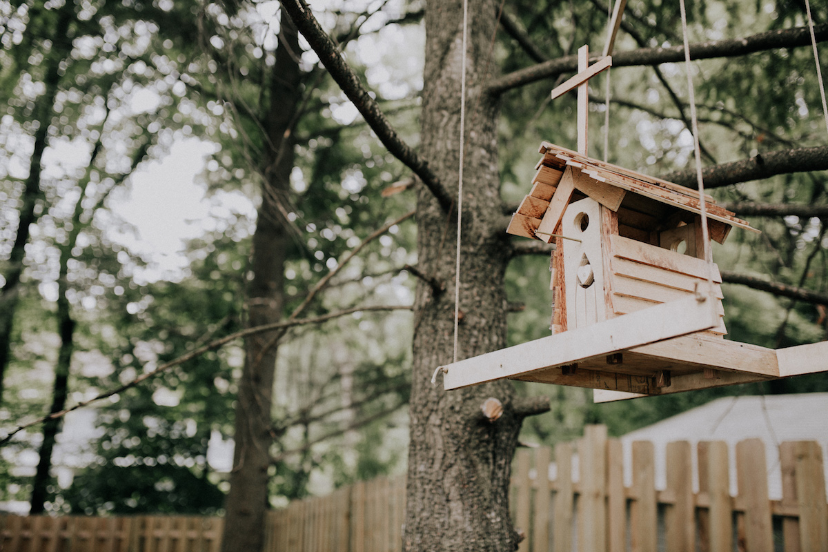 backyard_wedding_birdhouse_hanging_from_tree.jpg