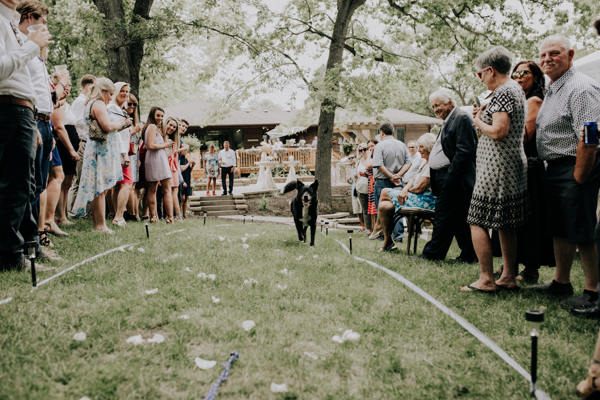 black_dog_walking_down_aisle_of_backyard_wedding.jpg