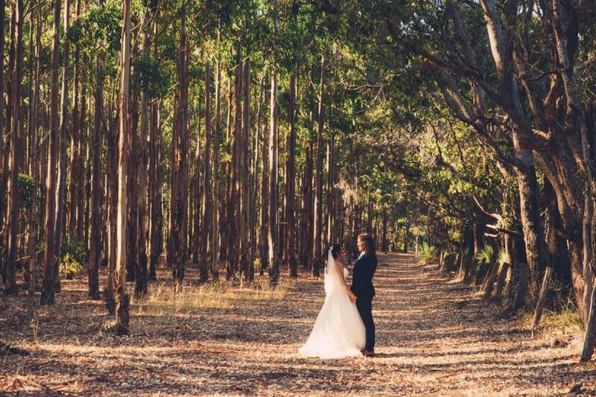 bride_and_groom_middle_of_forrest.jpg