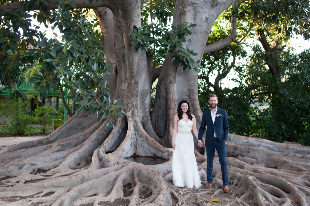 bride_groom_standing_in_large_tree_roots_unique_location.jpg