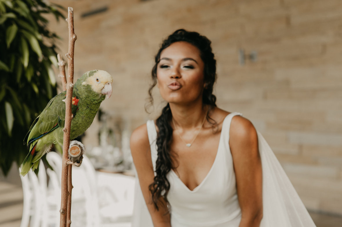 bride_with_parrot.jpg