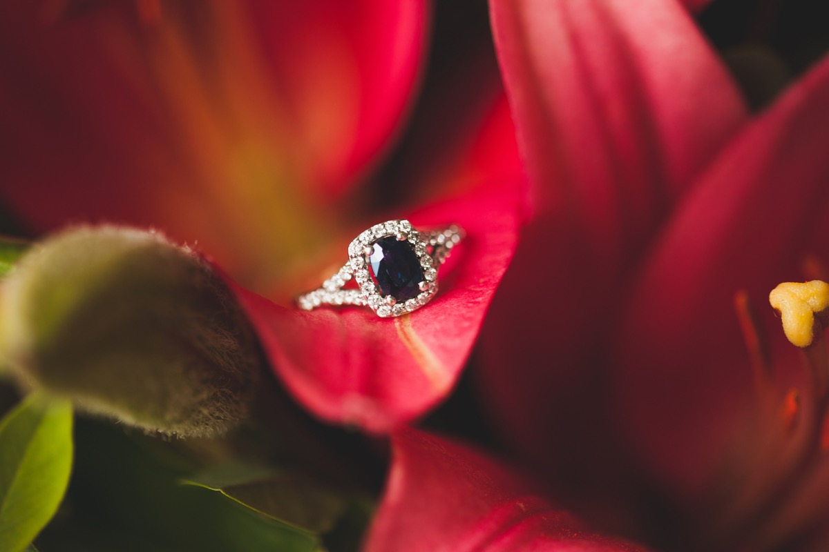 closeup_of_engagement_ring_black_diamond_in_red_flower.jpg