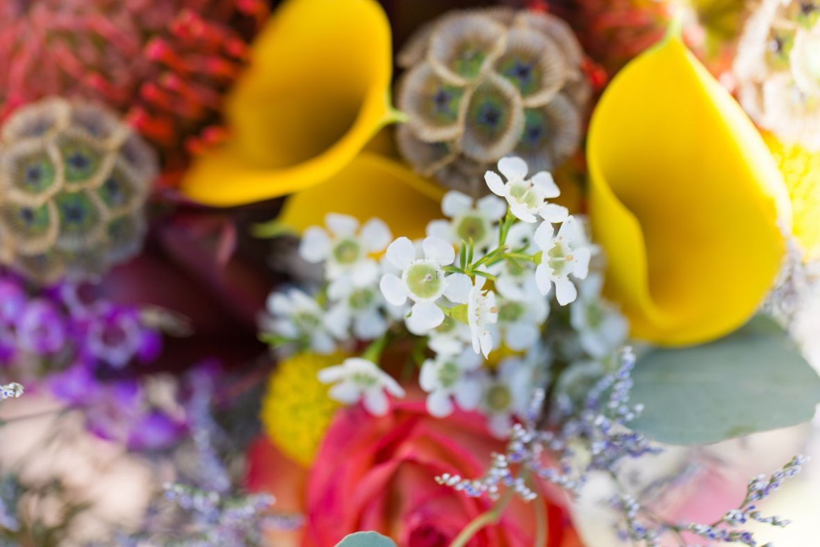 closeup_of_vividly_bright_bouquet_yellows_red.jpg