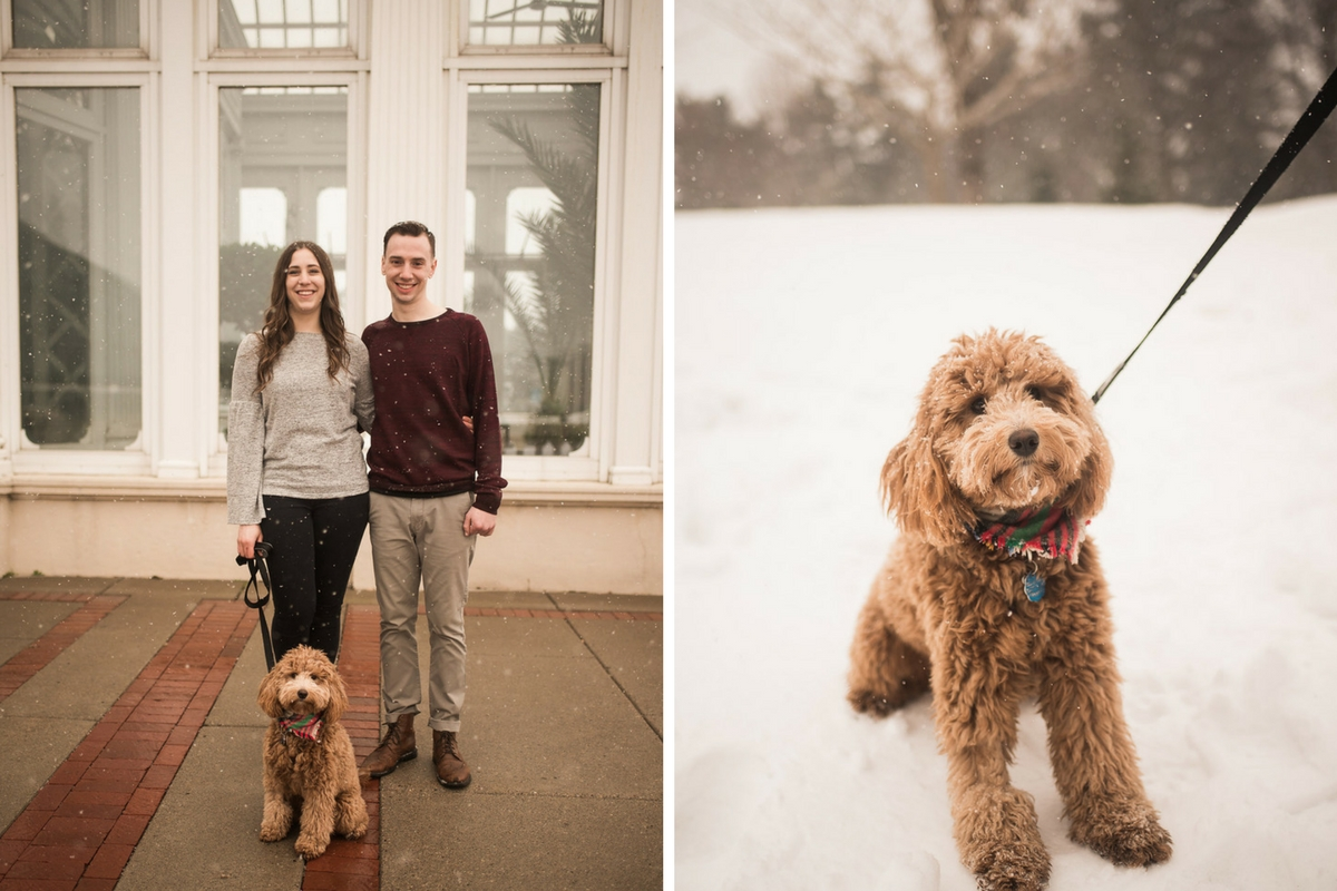engaged_couple_standing_outside_with_goldendoodle_white_conservatory.jpg