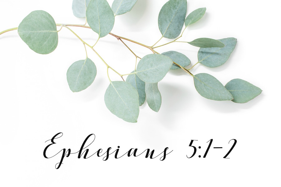 ephesians_51-2_wedding_ceremony_bible_verse_non-cliche.jpg