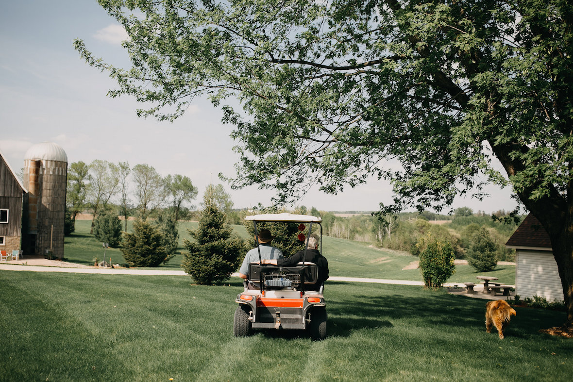 golf-cart-and-dog-outside.jpg
