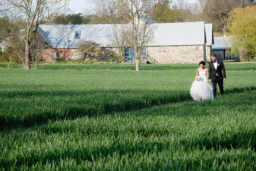 newlyweds_walking_holding_hands_green_yard_stone_barn.jpg