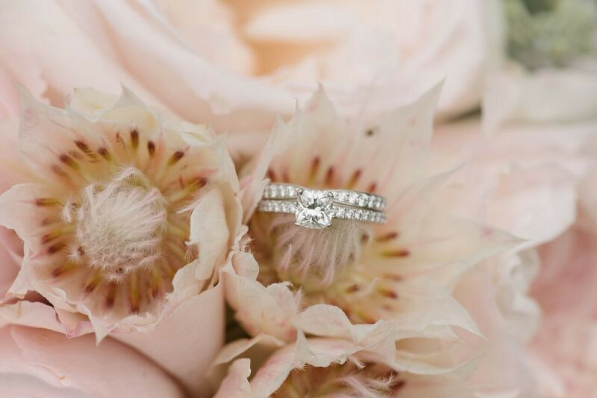 solitare_engagement_ring_on_pink_flowers.jpg
