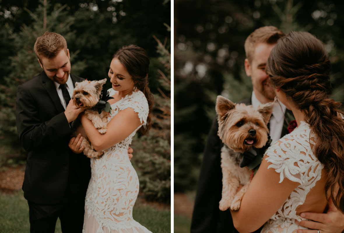 wedding_photo_with_puppies.jpg